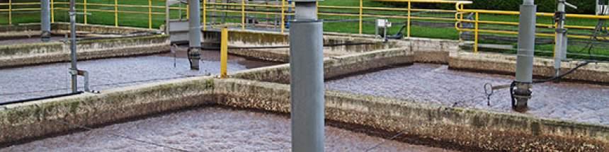 fangos activados en Estella/Lizarra